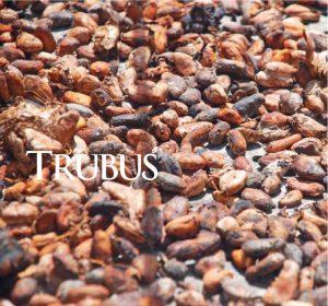 Kreatif Pasarkan Kakao 1