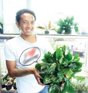 Amirul Mukminin,penjualan tanaman hias air