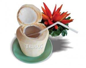 Air kelapa tingkatkan sistem kekebalan tubuh