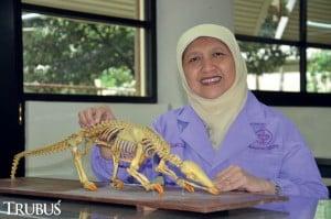 Dr drh Chairun Nisa' MSi PAVet, periset trenggiling dari Fakultas Kedokteran Hewan Institut Pertanian Bogor.