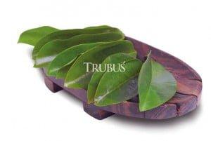 Kombinasi daun sirsak dan herbal lain maksimalkan khasiatnya