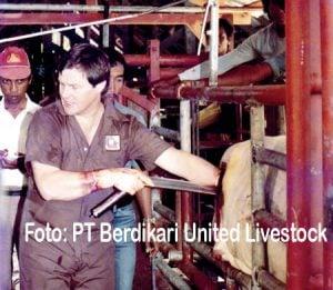 PT Berdikari United Livestock pertama kali yang melakukan transfer embrio di Indonesia pada 1985.