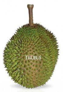 Durian tanpa aroma hasil silangan Lutfi Bansir berteksur daging buah halus, manis, dan legit