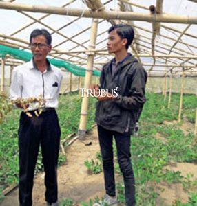 Aditya Novianto (kanan) dan Ikhdanudin Nur Rosyidi, mahasiswa Fakultas Biologi Universitas Gadjah Mada (UGM) Yogyakarta yang mengembangkan potensial kacang lurik.