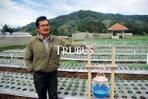 Ahli hama dan penyakit sayuran di Balai  Penelitian Tanaman Sayuran (Balitsa), Ir. Tony Koestoni Moekasan,