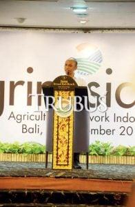 Ida Bagus Agung Gunarwatha, ketua JCI Farmers Club, Agrinesia 2016 menjadi ajang bertemunya para petani dengan pasar.
