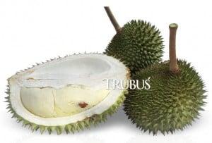 Durian berayut dari Bulungan. Buah berbobot 4—5 kg dengan daging buah empuk, tebal, manis bermentega, tapi sedikit berair
