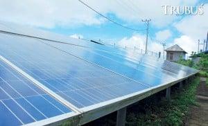 Panel surya menjadi solusi sumber energi untuk berhidroponik.